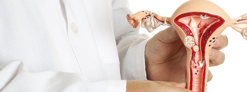 Malformação uterina não impede gravidez,  mas pode trazer prejuízos durante a gestação