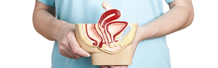 Endometriose e Gravidez: Profunda, Cuidados, Tem Cura?