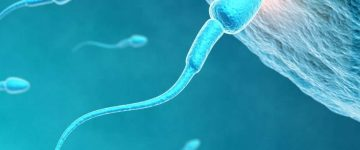 Banco de Sêmen: Tire suas Dúvidas Sobre Doar Esperma